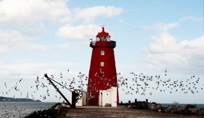 Flock To The Lighthouse - Photo by David Martin