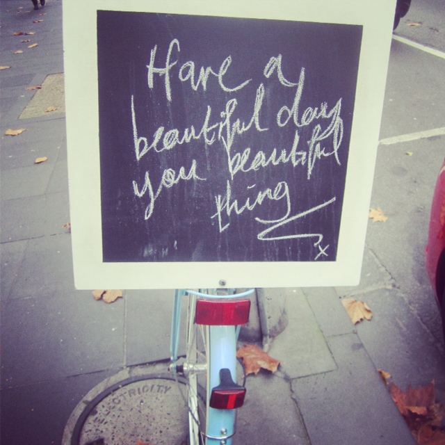 Have A Beautiful Day You Beautiful Thing - Photo by Amy Kennelly