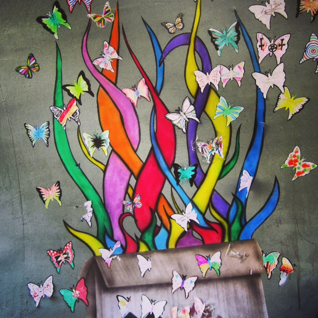 Butterflies - Photo by Amy Kennelly