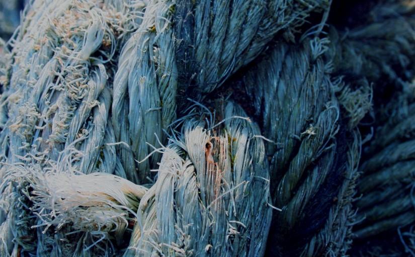 Skylarks by ChrisBeausang