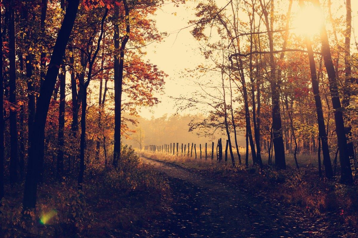 Gone, Light Passing by KaylenForsyth